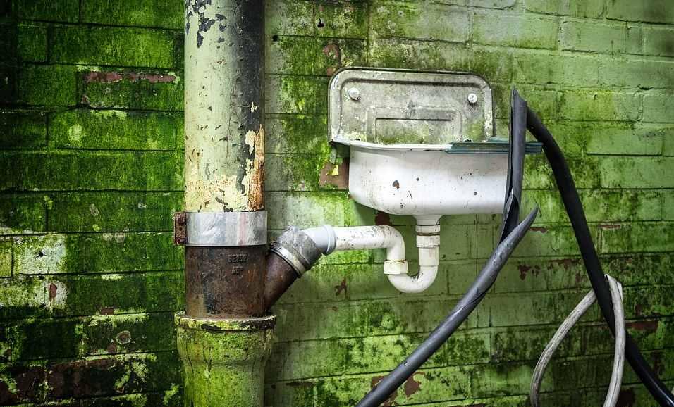 Greenwashing? Was ist das eigentlich?