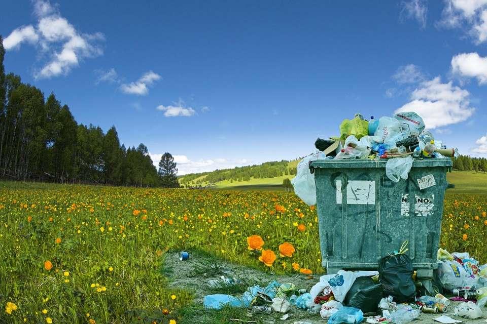 Müll vermeiden im Singlehaushalt