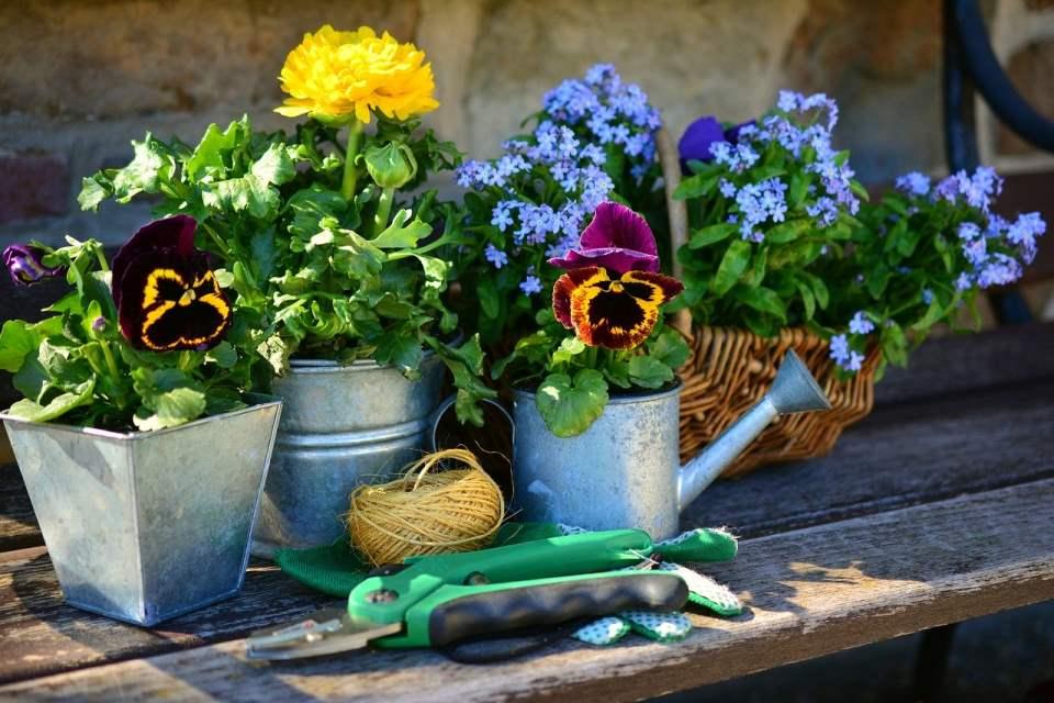 So gelingt die nachhaltige Gartenarbeit