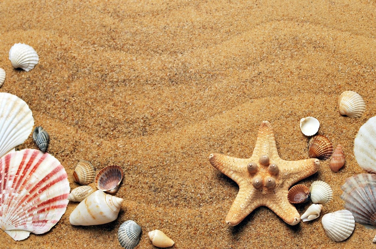 Urlaub im Einklang mit der Natur: Nachhaltig erholen