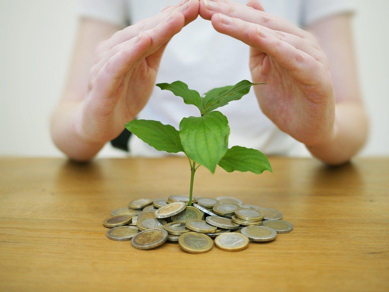 Wie kann ich am besten nachhaltig investieren?